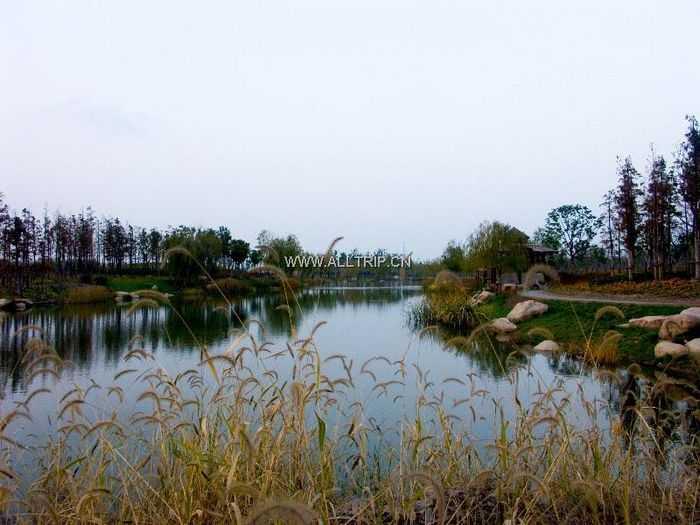 清凉暑期游:黄山到休宁岭南三溪景区一日游