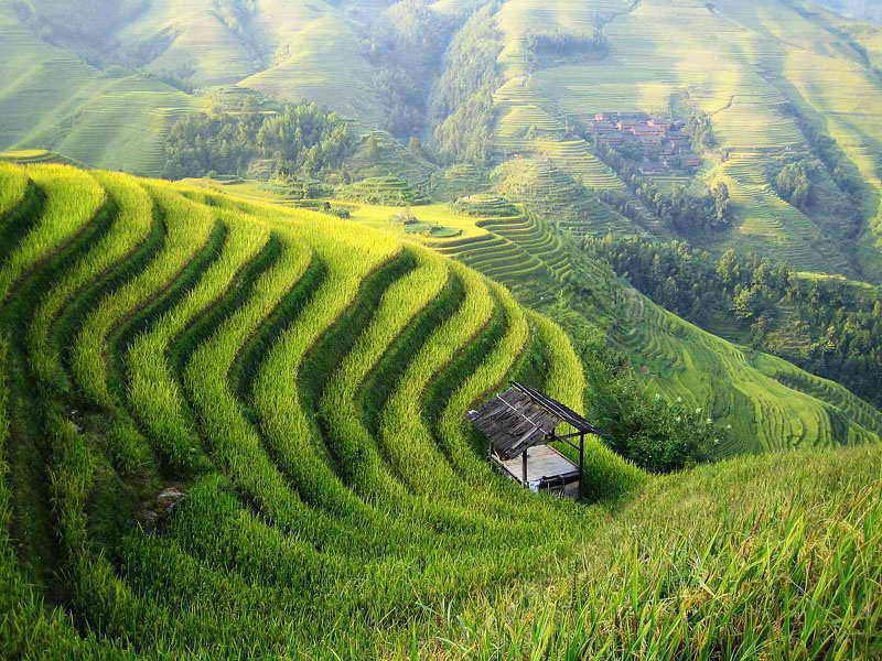 上海到桂林龙脊梯田、象鼻山、兴坪风光、漓江精华双飞四日游