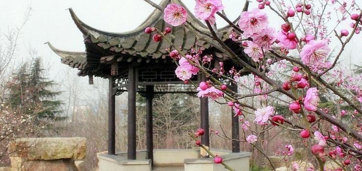 扬州动物园