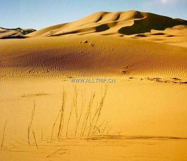 埃及、迪拜10天参考行程  沈阳优质旅行社-辽宁和平国际旅行社总部