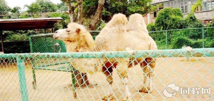 南宁市动物园(加勒比水世界)