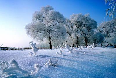 雪乡+吉林雾凇岛休闲三日游 雪乡怎么去雾凇岛 雪乡雾凇岛旅游
