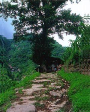 北京到四川九寨沟、黄龙、羌人谷、九曲黄河、龙日坝双卧8日旅游