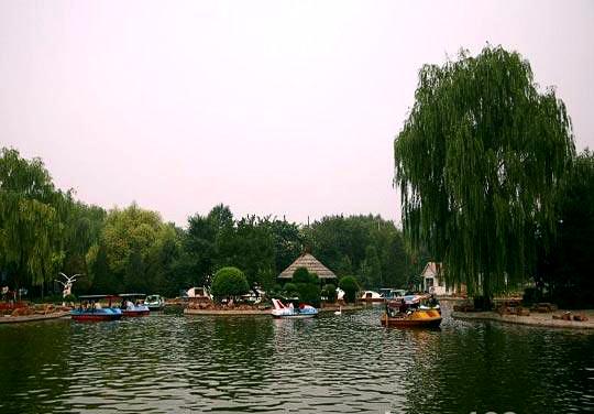 植物园乌鲁木齐