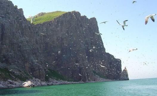 济南出发大连旅游_神龙仙岛 圣亚海洋主题乐园 金石滩双飞4日