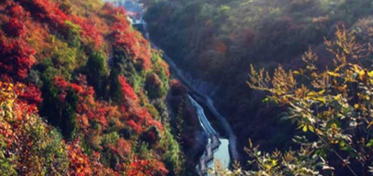 团队昌平旅游 北京到双龙山森林公园 休闲采摘汽车一日游