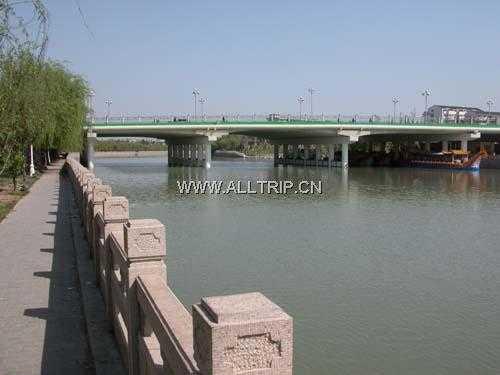 南京到扬州银杏大道、三湾湿地一日游