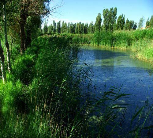 【精品地貌景观线】:七彩丹霞、黑河湿地一日游