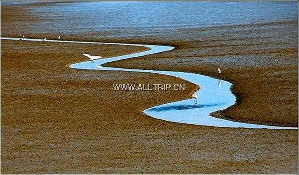 浪漫草原之夜--兰州 塔尔寺 青海湖 茶卡双飞5日游