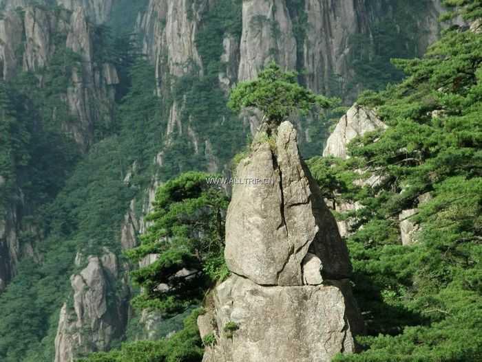 锦绣纯玩   华东三市+黄山千岛湖+乌镇七日游