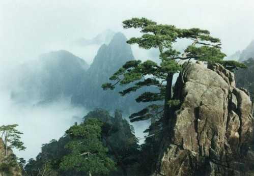贵州到安徽旅游|贵阳到黄山旅游|六月黄山旅游报价