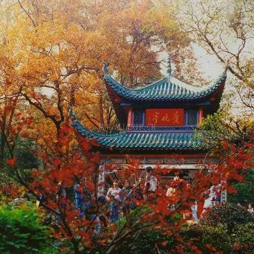郑州出发到长沙、韶山、张家界、天子山、凤凰双卧七日游郑州到张家界旅游