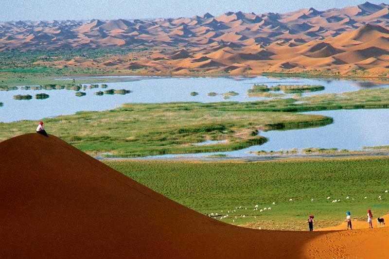 沙湖 沙坡头 通湖草原 崆峒山 天水麦积山五日游30人团