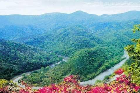 武汉周边一日游 美人谷、姑嫂桥1日游