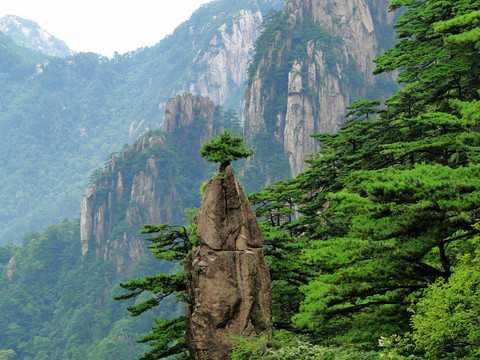 南宁出发到上海|游黄山千岛湖杭州上海水乡乌镇双飞六日游