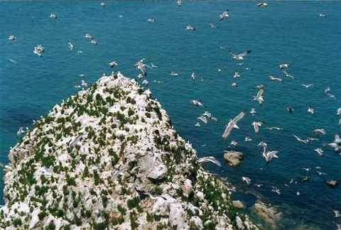济南出发蓬莱长岛旅游_蓬莱长岛三日游_蓬莱长岛旅游攻略