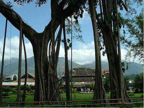 石家庄到西双版纳旅游 石家庄到缅甸异国风景旅游 石家庄旅行社