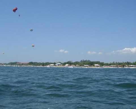 木雕海豚顶球图片