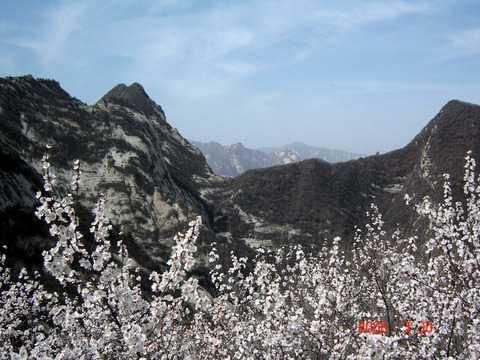 合肥到西安、华山、河南龙门石窟、少林寺七日游