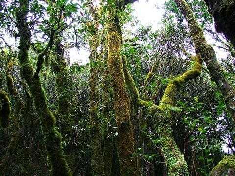 呼和浩特到桂林旅游推荐_船游大漓江,遇龙河漂流,特色度假村