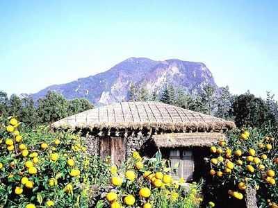 首尔,济州5+1豪华六日行程  沈阳优质旅行社-辽宁和平国际旅行社总部