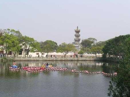端午节青岛到宁波普陀 杭州西湖 西溪湿地纯玩四日