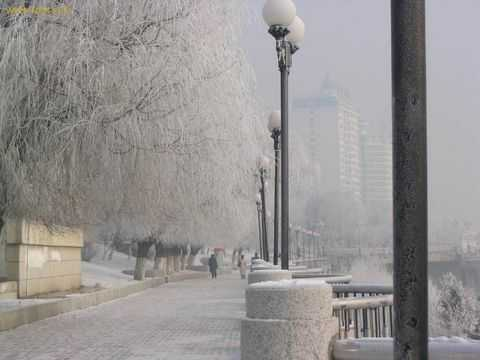 南京到沈阳、长春、哈尔滨、亚布力、雪乡双飞七日游