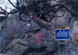 泉州安溪清水岩、德化岱仙瀑布、云龙谷休闲二日游