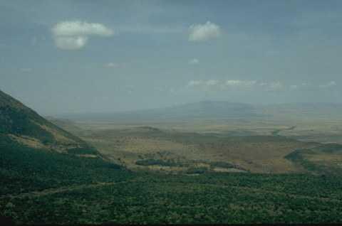 长沙去肯尼亚迪拜观动物迁徙顶级享受九天团(去肯尼亚旅游多少钱)
