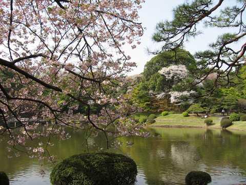 春节银川出发到日本东京、富士山、名古屋双飞6日全景游