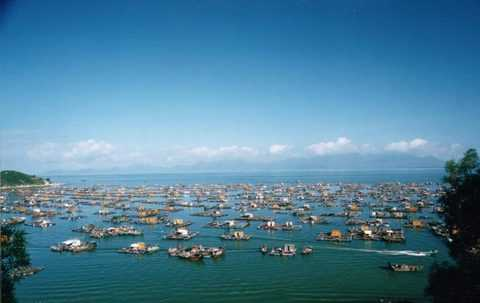 阳江闸坡大角湾、古仿真船、休闲二天游