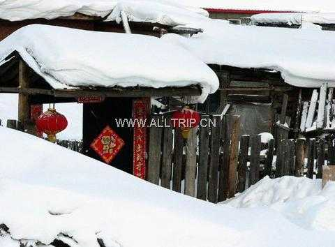 广元到哈尔滨 亚布力滑雪 雪乡赏雪双飞五日品质游