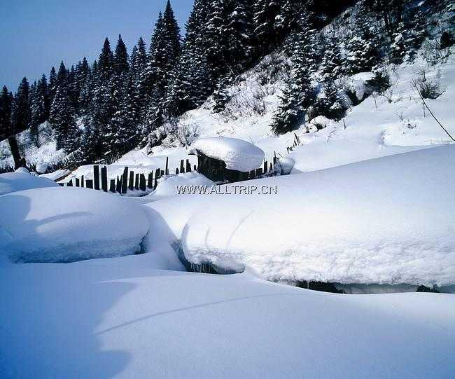 郑州到东北滑雪游——沈阳、长春、哈尔滨、雪乡空调双卧7日游