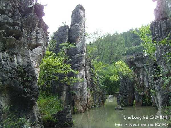 【多彩贵州】黄果树瀑布-西江苗寨-青岩古镇-花溪湿地双飞5日
