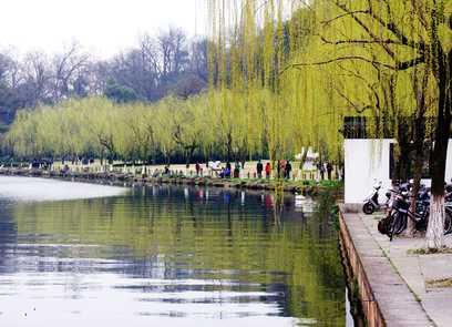 胶州到到苏州、杭州、乌镇、西塘旅游