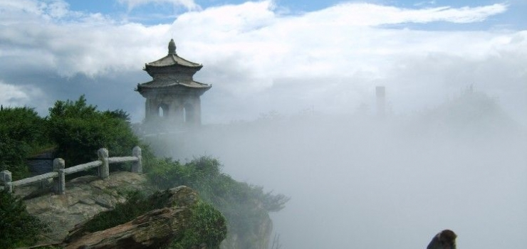 南京到灌云伊甸园花海 亚当果园采摘纯玩一日游