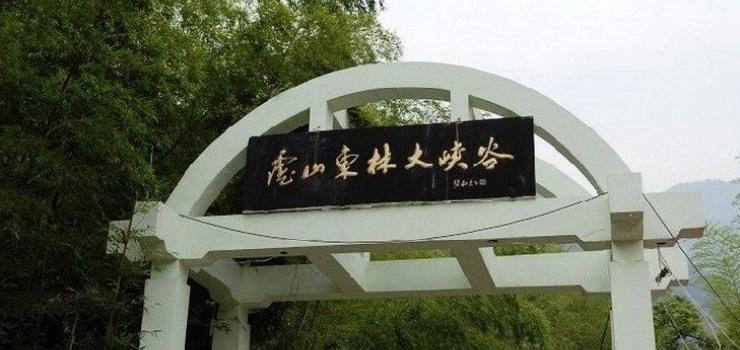 东林大峡谷、东林大佛一日游
