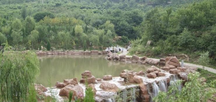 微山湖湿地、盈泰温泉二日游