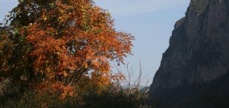太行山大峡谷二日游