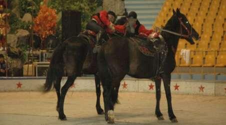 【杭州野生动物世界】杭州杭州野生动物世界门票价格