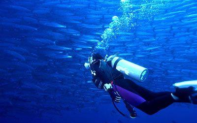 【工体富国海底世界】北京工体富国海底世界门票价格