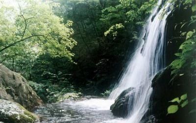 重渡沟自然风景区位于栾川县潭头镇西南10公里的