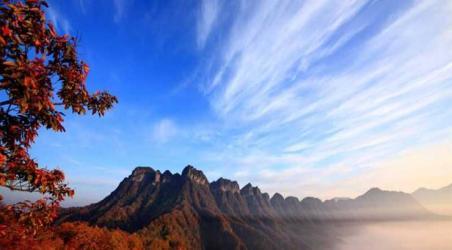 国家森林公园,国家地质公园,国家森林旅游景区,幅员面积410平方公里