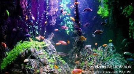 【桂林海洋世界】桂林桂林海洋世界门票价格