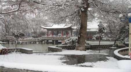 红园建筑上独特的砖雕,木雕和河州彩绘闻名三陇,尤其是砖雕艺术,品种