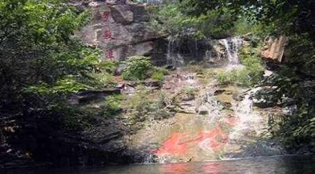 理由2  天下第一龙风景区主要景点有古石龙群,龙饮湖,凤凰台,罗敷