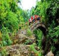 广西龙潭国家森林公园