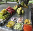 素帕塔水果园