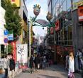 (日本横滨)箱根