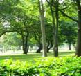 (广东珠海)海滨公园